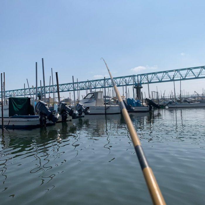 江戸川ではぜ釣り4